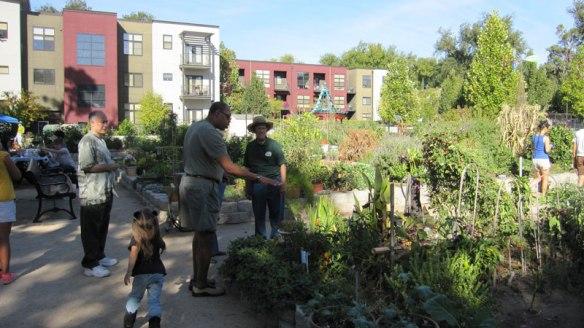 Neighbors learn about the garden